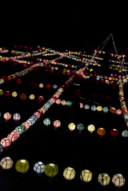 Lanterns on Buddha's birthday