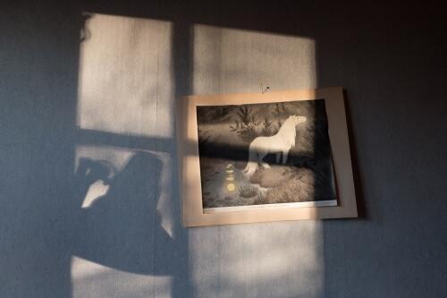 White horse – Th. Kittelsen